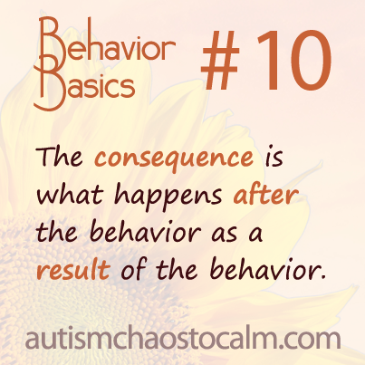 Autism, ABA, behavior, parenting, tagteach
