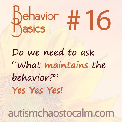 behav basics 16
