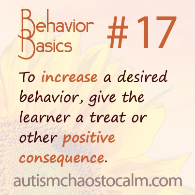behav basics 17