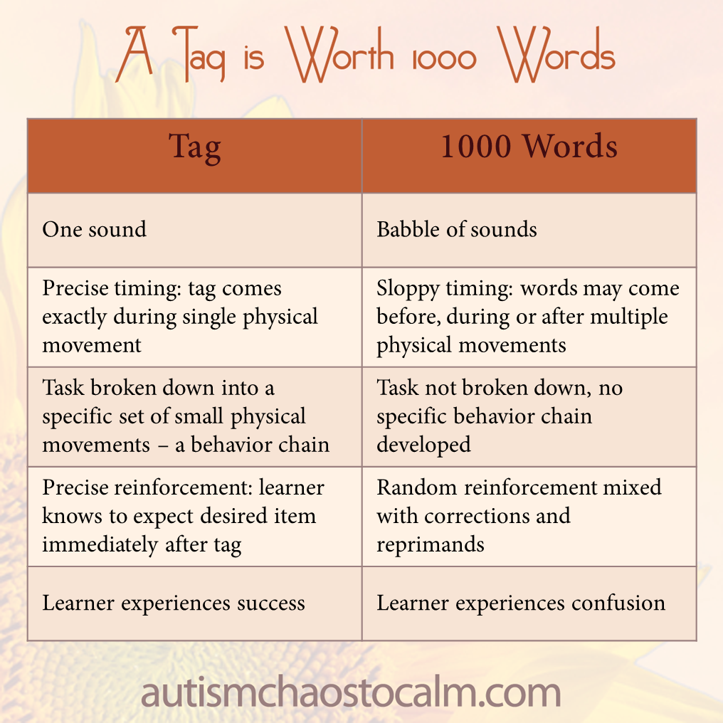 tag vs 1000 words